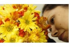 Curso de Arte Floral - Batista Reis - www.batistareis.com.br